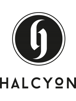 https://www.wearelocal.co.nz/image/cache/catalog/partners/Halcyon-Logo-246x325.png